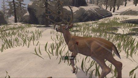 Deer Hunter: Reloaded (2017) PC | Лицензия